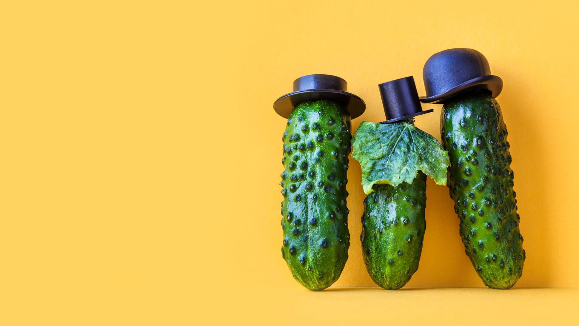 Pepinos <br>só na salada